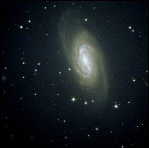 NGC2903-300x298