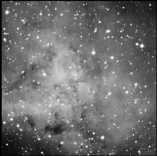 Rosette nebula nw corner