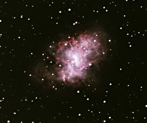 Crab Nebula - Tom Traub - 2020