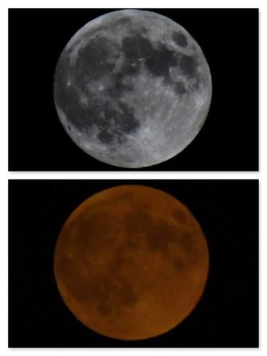 Moon collage super flower blood full moon