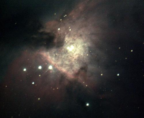 Orion Nebula Trapezium - Tom Traub - 2020